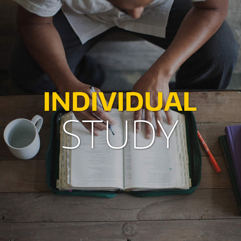 Individual Online Study